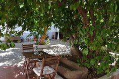 Fotos de El Escudo de Calatrava - Casa rural en Mohedas de la Jara (Toledo)