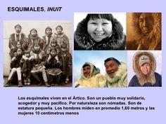 Los esquimales viven en el Ártico. Son un pueblo muy solidario, acogedor y muy pacífico. Por naturaleza son nómadas. Son d...