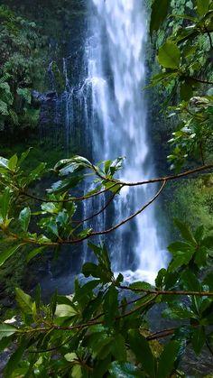 Beautiful Nature Scenes, Beautiful Photos Of Nature, Amazing Nature, Beautiful Landscape Wallpaper, Beautiful Landscapes, Green Nature Wallpaper, New Background Images, Best Photo Background, Nature Gif