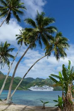 Take an around the world cruise