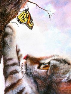 Le chat et le papillon