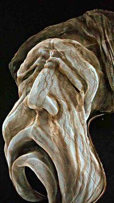 Wire mesh Sculpture ¨Agonía¨