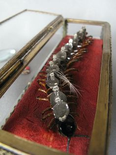 Centipede Men Reliquary Box (detail), 2012, by Lisa Wood