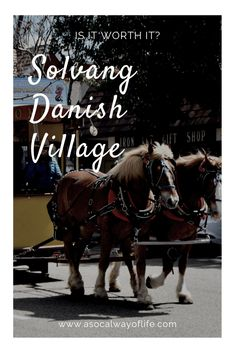 Have you heard about Solvang and been wondering whether it's worth it to take a drive out there? Read on for our opinion about Solvang!