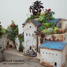 多肉寄せ植え用 小さな家 の画像|陶芸作家 中山典子のきまぐれ日記