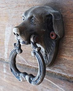 LABRADOR KNOCKER