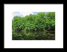 oak openings, swanton, ohio, landscape, lake,nature, landscape, michiale schneider photography, interior design, framed art, wall art