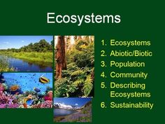 Ecosystems. This package includes the lesson (student and teacher versions of the Power Point), and a student lesson handout as a word document. Designed for Middle/Secondary classes but can easily be adapted to fit an Elementary classroom. Please view the Preview File. In order, the lesson covers: - Ecosystems - Abiotic/Biotic - Population - Community - Describing Ecosystems - Sustainability