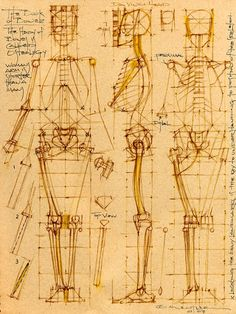 Michael Mentler cranial box turnaround view