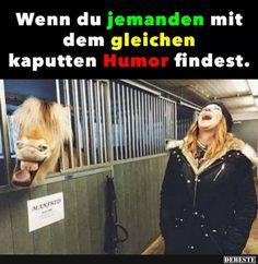 Wenn du jemanden mit dem gleichen kaputten Humor findest.. | Lustige Bilder, Sprüche, Witze, echt lustig