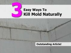 3 Easy Ways To Kill Mold Naturally
