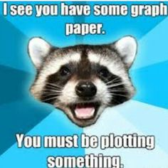 racoon meme plotting graph graphing paper math funny
