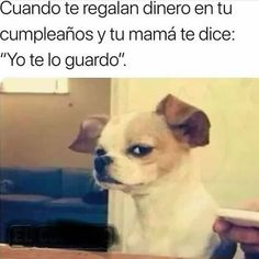 memes in spanish / memes in spanish ; memes in spanish mexican ; memes in spanish chistes ; memes in spanish funny ; memes in spanish amor ; memes in spanish love ; memes in spanish hilarious Funny Memes About Work, Funny Spanish Memes, Spanish Humor, Work Memes, Work Quotes, Work Humor, Funny Work, Office Humor, Funny Office