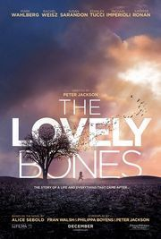 The Lovely Bones...I loved the music and artistry in it