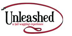 Unleashed  Best doggie daycare in the city!