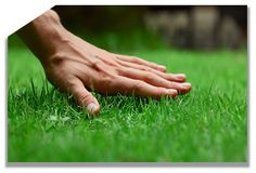 http://landscapingwoodstock.over-blog.com/2015/11/top-benefits-of-using-landscaping-professionals-in-woodstock.html landscaping Woodstock