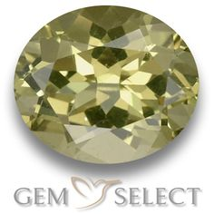 GemSelect features this natural untreated Apatite from Madagascar. This Green Apatite weighs 3.1ct and measures 10 x 8.7mm in size. More Oval Facet Apatite is available on gemselect.com #birthstones #healing #jewelrystone #loosegemstones #buygems #gemstonelover #naturalgemstone #coloredgemstones #gemstones #gem #gems #gemselect #sale #shopping #gemshopping #naturalapatite #apatite #greenapatite #ovalgem #ovalgems #greengem #green Green Gemstones, Loose Gemstones, Natural Gemstones, Buy Gems, Gem S, Gemstone Colors, Madagascar, Shades Of Green, Stone Jewelry
