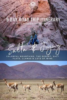 Road Trip itinerary for Jujuy & Salta in Northwest Argentina, everything you need to know! #Argentina