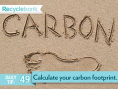 Check your carbon footprint to understand your impact and consider offsetting.