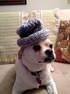 My sweet boy in his fancy hat