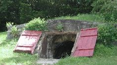 A Brown Spot on the Web: The Root Cellar