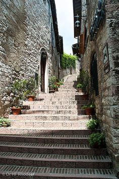 Steps leading to the Rocca Miggiore, Assisi, province of Perugia , Umbria region Italy