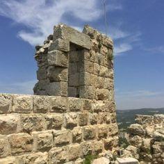 el castillo de Ajloun11