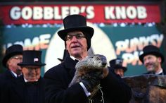 Everything you ever wanted to know about groundhog day and Punxsutawney Phil, including a history of Groundhog Day and other famous groundhogs. Reading Stories, Groundhog Day, How To Become, History, Celebrities, Places, Travel, Historia, Celebs