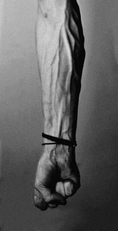 But the most interesting and striking thing about him was his veins that were like the deep roots of a tree.