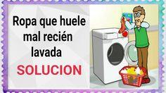 Ropa que huele mal recién lavada. Mantenimiento de la lavadora. (Editado)