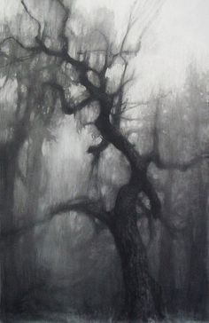 Charcoal Drawing Design Elaine Green, Large Oak charcoal, gesso on paper Tree Drawings Pencil, Dark Art Drawings, Art Drawings Sketches, Graphite Drawings, Easy Charcoal Drawings, Charcoal Art, Charcoal Sketch, Forest Drawing, Moon Drawing