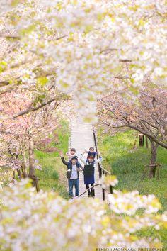 桜満開、笑顔も満開になった後は、太陽にバイバイを言いにいこう! @北九州でファミリーフォト - ○○しゃしんのじかん http://blog.goo.ne.jp/moriken_photo/