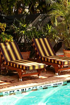 Lounge poolside with a drink before heading out to experience Miami's nightlife. #Jetsetter Freehand Miami (Miami, Florida)