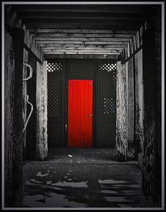 Red Door I See A And Want To Paint It Black