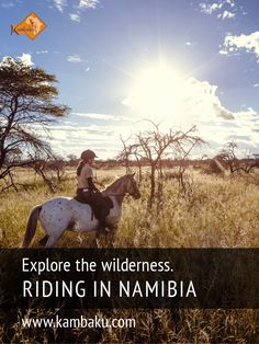 Horseback Safaris in Namibia for advanced and novice riders. Go explore the wilderness! #kambaku #horsesafari #safarionhorseback #reitsafaris #horses #kambaku #lodge #namibia #africa #afrika #safari #bestlodge #adventure #savanna #holiday #riding #horseriding