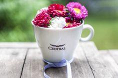 Un lindo café para todas esas hermosas mujeres!