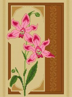Orchidea (roślina, kwiat, bukiet, storczyk)