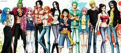 One Piece characters, Vivi, Bartolomeo, Perona, Ace, Nami, Hancock, Luffy, Zoro, Rebecca, Sanji, Robin, Law, cool; One Piece