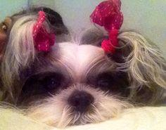 Mila's fashion