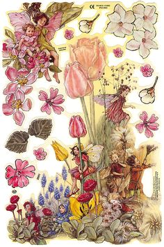 England Paper Scraps Lithograph Die Cut Flower Fairies Cicely Mary Barker Out Of Print Pink Tulips, Tulips Flowers, Cicely Mary Barker, Vintage Fairies, Embossed Paper, Decoupage Paper, Flower Fairies, Vintage Ornaments, Fairy Art