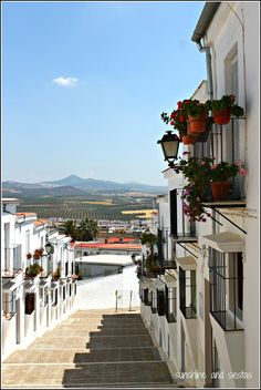 Wonderful Andalucía http://www.travelandtransitions.com/european-travel/