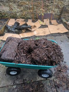 Mulching for Weed Control. Saving My Raspberries from Weeds, Quickly & Easily.