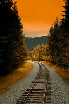 A beautiful photograph of a railroad track in Autumn in Washington. Photo Background Images, Photo Backgrounds, Railroad Pictures, Train Art, Old Trains, Train Pictures, Train Tracks, Nature Pictures, Railroad Tracks
