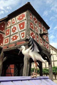 Ecomusée d'Alsace - Ungersheim - #Alsace ~ ღ Skuwandi