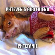 Phtefanie