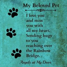 Losing A Dog Quotes Grief Rainbow Bridge Pet Loss I Love Dogs, Puppy Love, Love You, My Love, Animal Quotes, Dog Quotes, Miss My Dog, Pet Loss Grief, Dog Poems