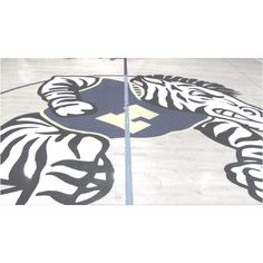 Zebras. High school. Someday, it will end. Before we know it.