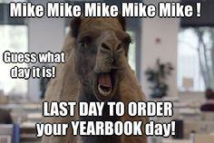 The 'Hump Day' camel. Elementary Yearbook Ideas, Yearbook Class, Elementary Schools, Hump Day Meme, Wednesday Memes, Happy Wednesday, Funny Yearbook Quotes, Festivals, Atlanta