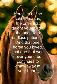 This is so true! It's been 50....oh my god, yes 50! years ago!! He was my first true love. I was 9 and his name was Ahab. I loved him so much and I keep him tucked away in my heart. And I will never, ever forget him. ♥