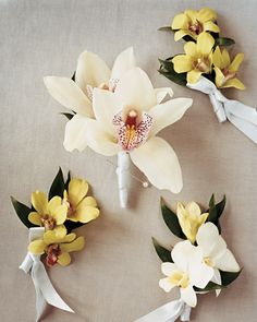 Orchid Boutonnieres                       Boutonnieres and corsages are stylishly clad in silver-gray ribbons: The bride's mother wore orchids (center) that matched the maid of honor's bouquet, and the groom, his sons, and ushers wore dendrobiums.